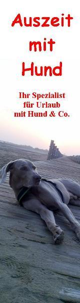 Link zu Auszeitmithund